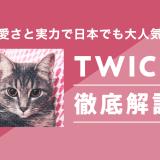 TWICE 徹底解説 サムネイル画像
