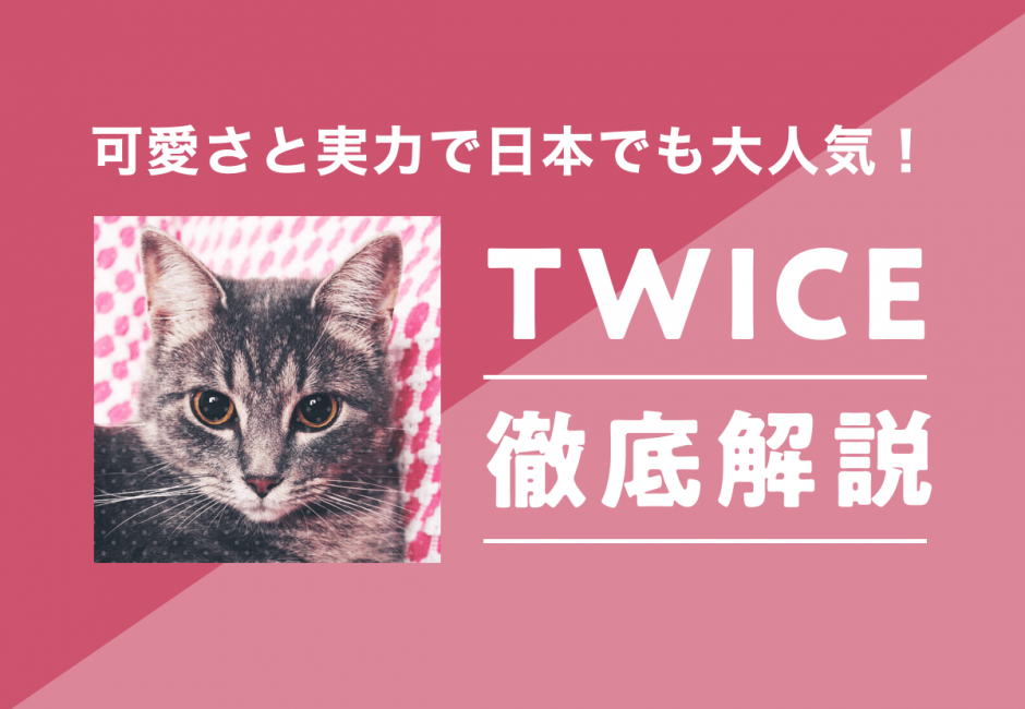 TWICE(トゥワイス)メンバーの年齢、名前、意外な経歴とは…?