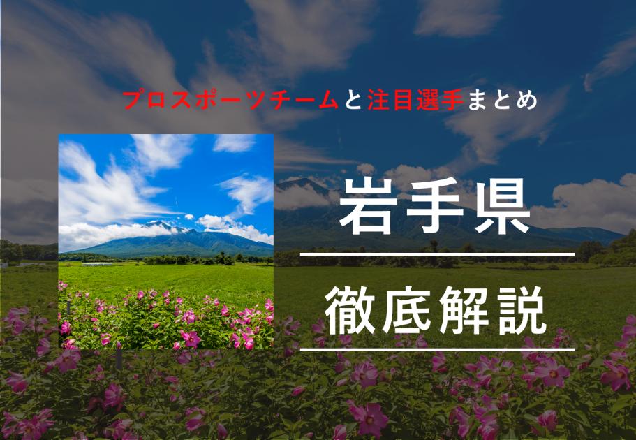 【2020年最新】岩手県のプロスポーツチームまとめ