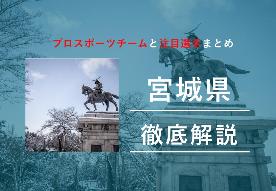 【2020年最新】宮城県のプロスポーツチームと注目選手まとめ
