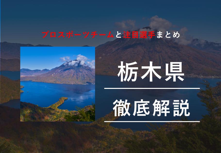 【2020年最新版】栃木県のプロスポーツチームまとめ